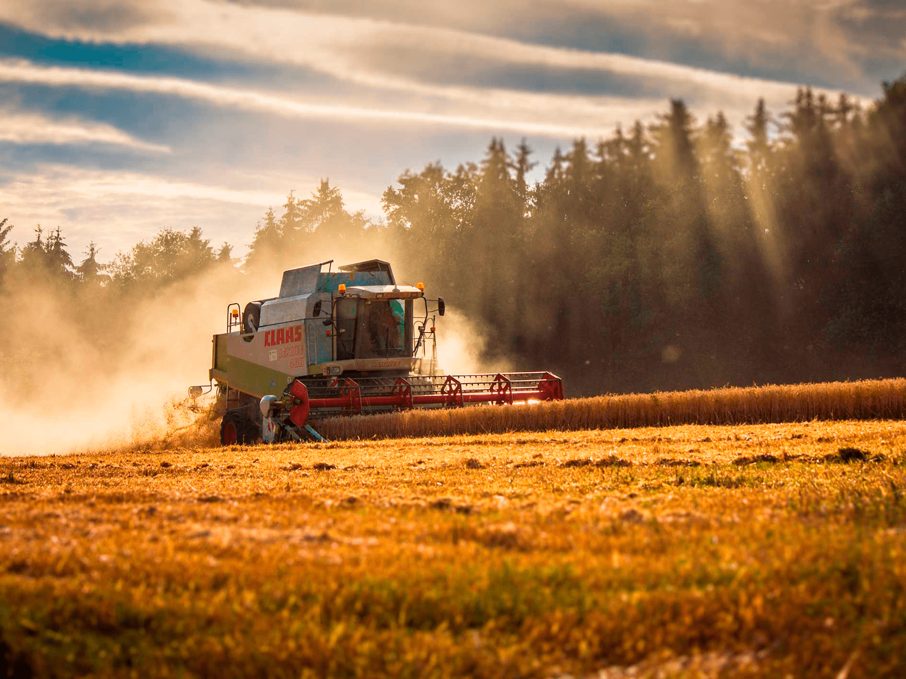 Termografering i landbrug
